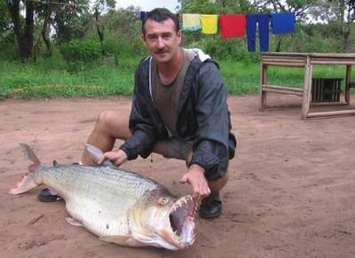 African Tiger Fish on Visitor S Photo Gallery   Les Plus Populaires African Tiger Fish
